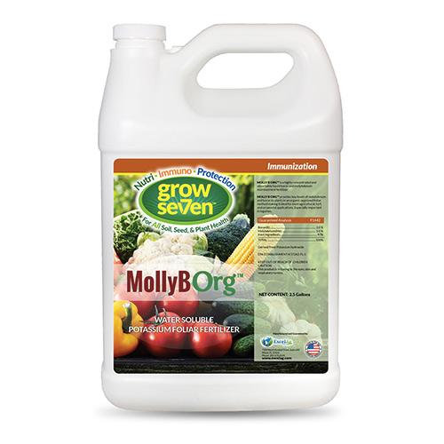 Grow-Seven-MollyBORG-1-Gal
