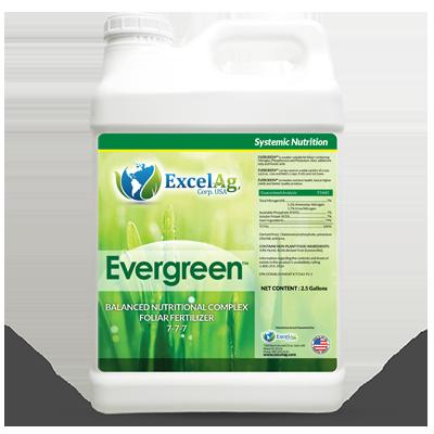evergreen-excelag-2017-1