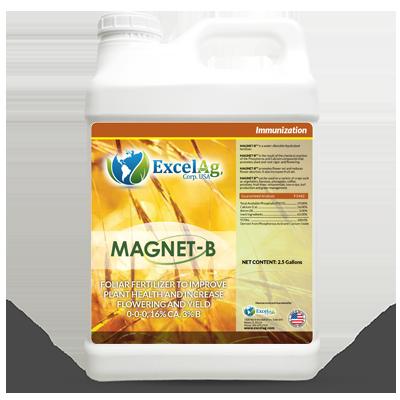 magnet-b-excelag-2017-1