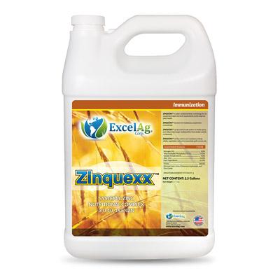 zinquexx-excelag