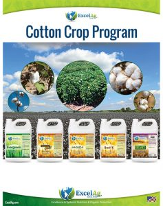 COTTON-PROGRAM-Sell-Sheet-1
