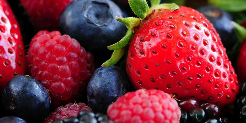 nipheaders-berries