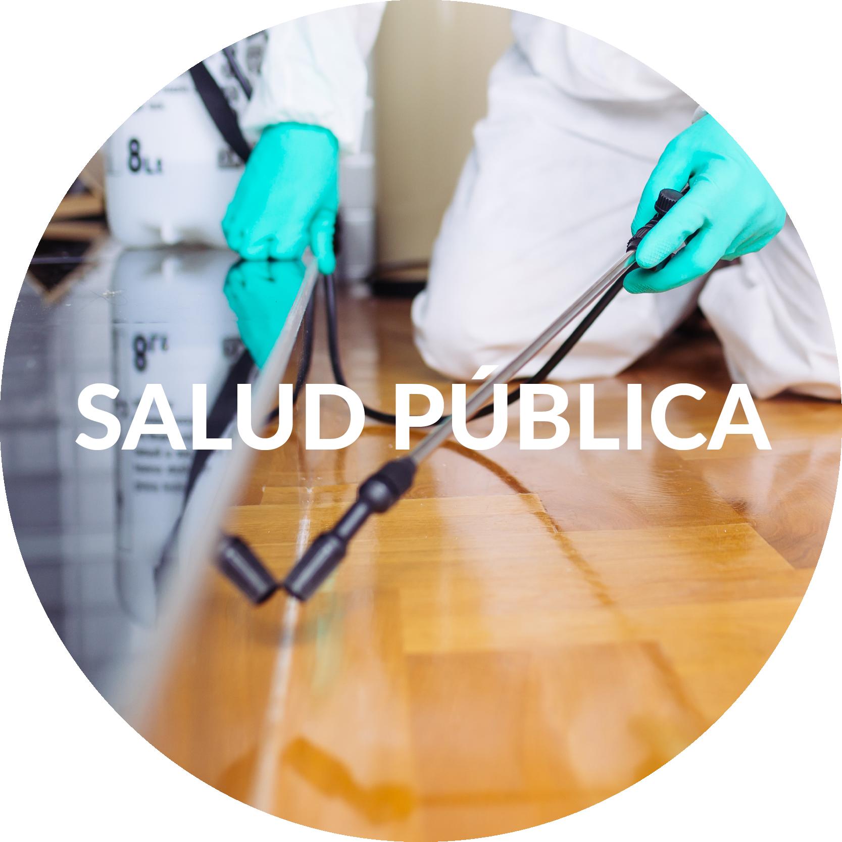 Salud Pública-01